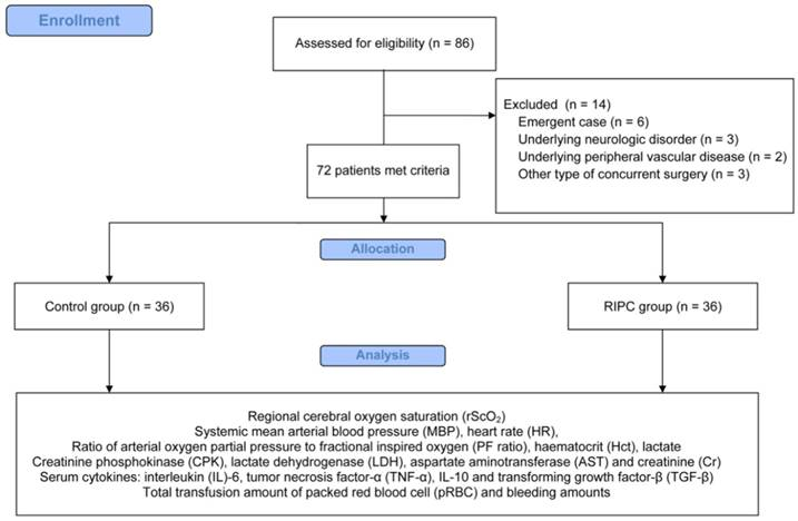 Impact of remote ischaemic preconditioning on cerebral