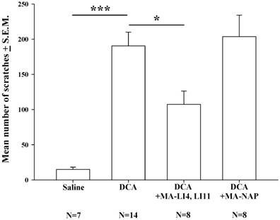 Manual acupuncture relieves bile acid-induced itch in mice